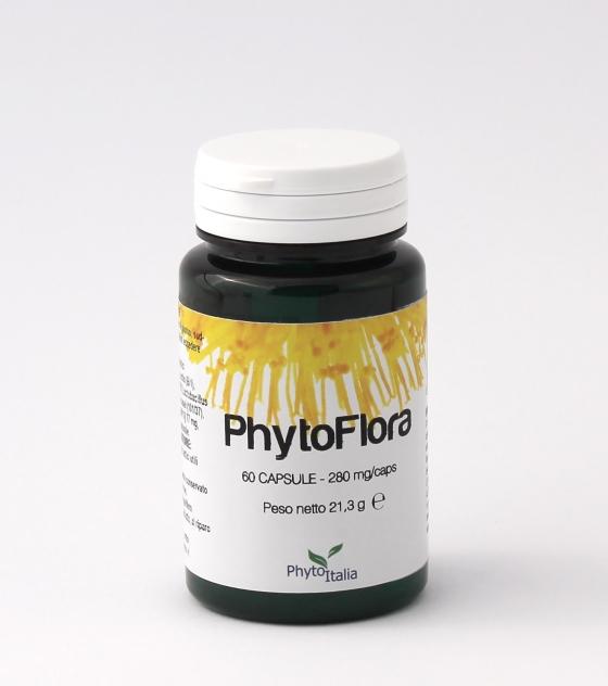 phytoflora; probiotici; fermenti; lattici; intestino; intestinale; stomaco;